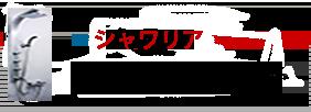 日本シンクのシステムシャワー/シャワリア